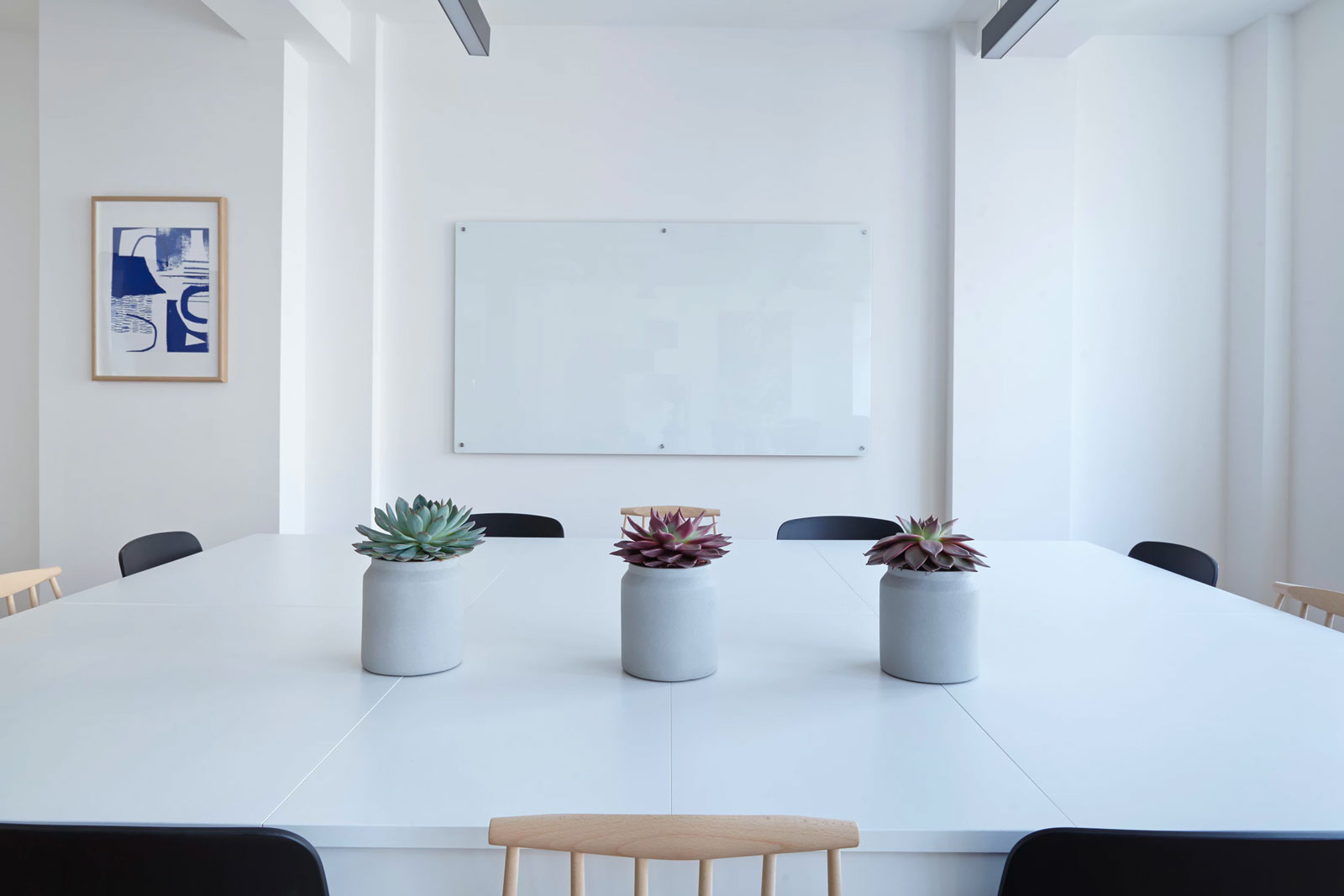 whitespace Conference Room